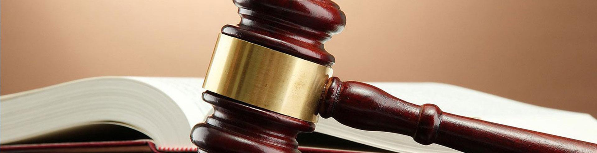 Подготовка жалобы, подготовка иска для подачи в суд в Липецке и Липецкой области